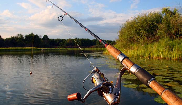 8 Mejores Cañas De Pescar Pomoxis En 2020
