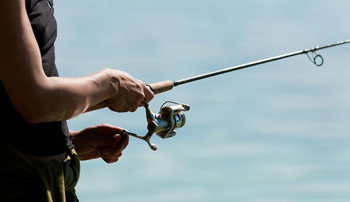 10 Mejores Cañas De Pesca Telescópicas En 2020