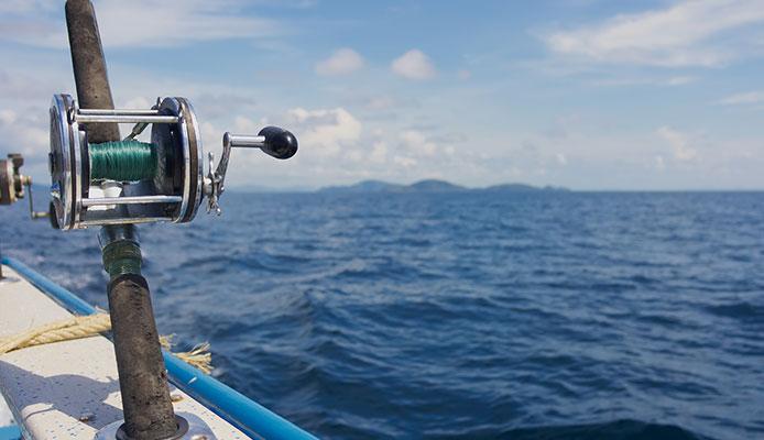 8 Mejores Carretes De Pesca Profesionales En 2020
