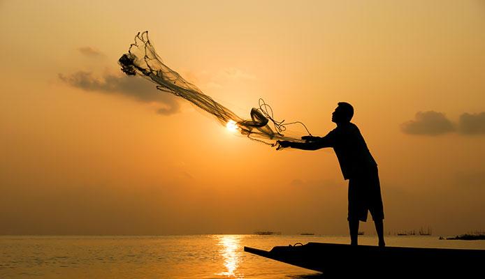 10 Mejores Redes de pesca en 2020
