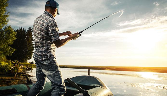 10 mejores bolsas de pescado aislantes en 2020